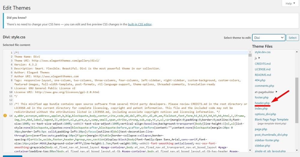 WordPress Theme Editor Divi theme