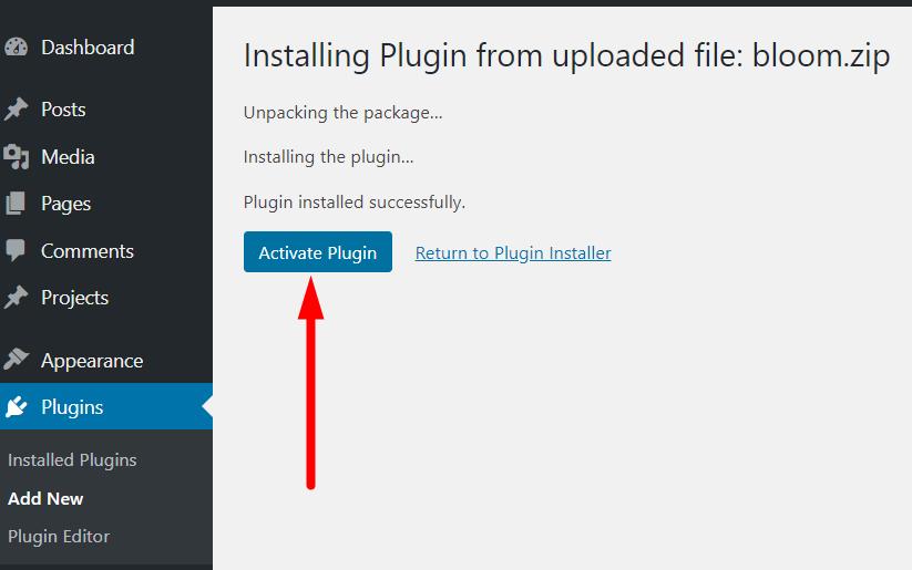 WordPress plugin activate button