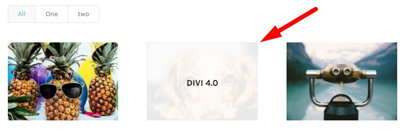 Show title on hover Divi filterable portfolio module